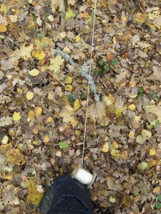 thread walking